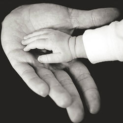 Front page parental news - children's hand is in the hands of an adult